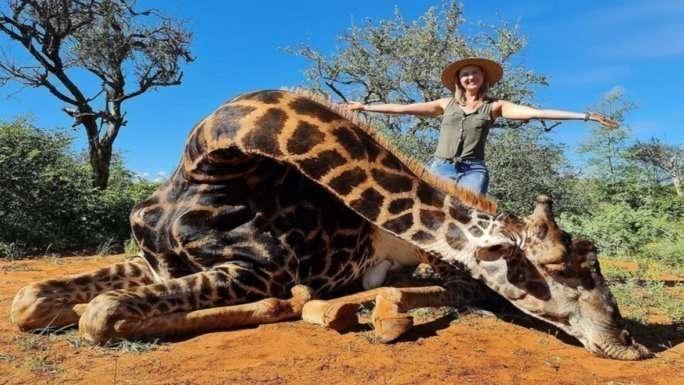 Cazadora posa con corazón de la jirafa que mató
