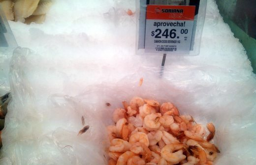 Sube 100 precio de kilo del camar n aqu la opci n de - Precio kilo pellets ...