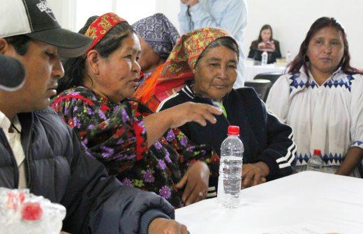 Trabajan en la preservación lingüística y diversidad cultural Indígena