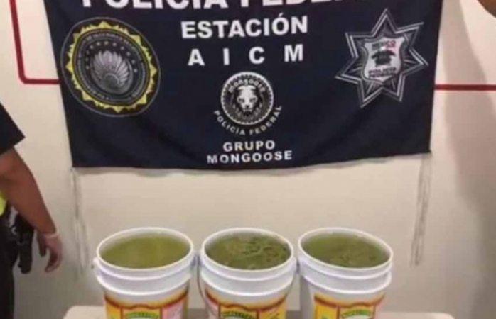 Aseguran metanfetamina disfrazada de nopales en el AICM