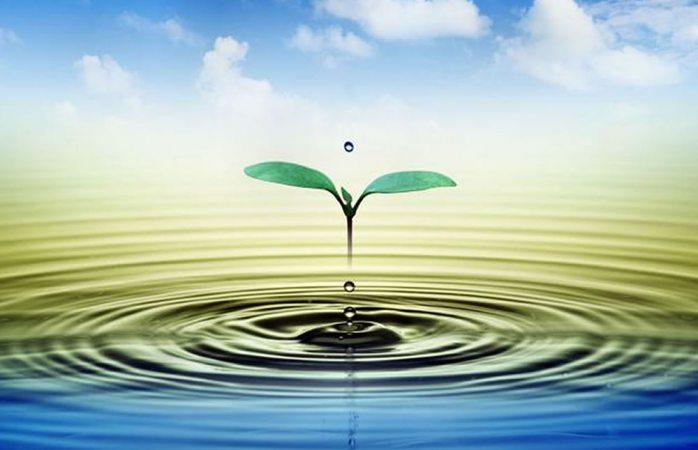 Invitan a participar en carteles relacionados con el tema Agua y Vida