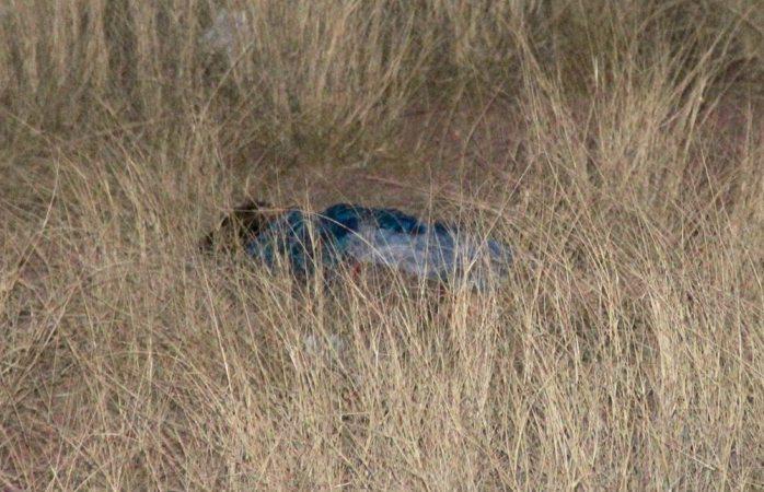 Identifican a la joven asesinada en Los Arroyos