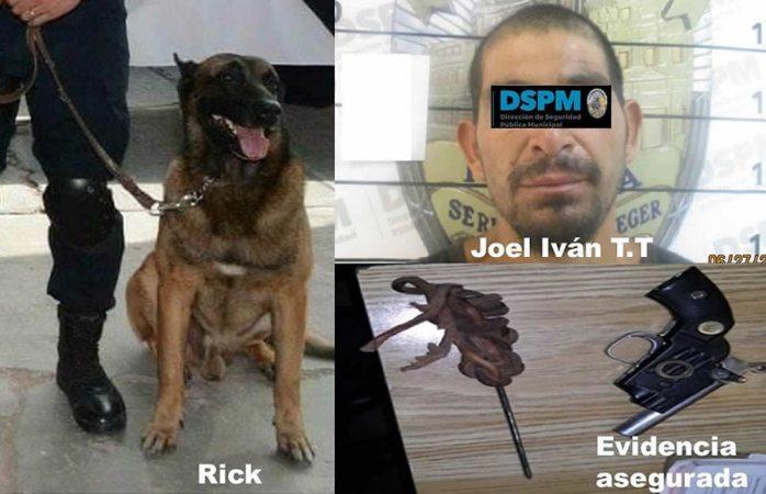 Desarma perro policía a uno que amenazaba a policías