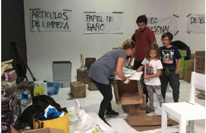 Codo a codo recolectan víveres Diego Luna y Camila Sodi
