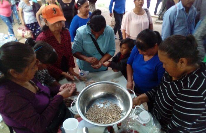 Instala comunidad indígena plantón frente a palacio