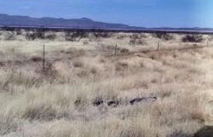 Localizan dos cuerpos sin vida en el km 92 de la carretera a Juárez