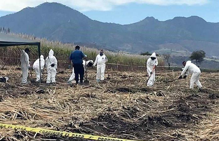 Aparecen 8 cuerpos en fosa clandestina de Nayarit