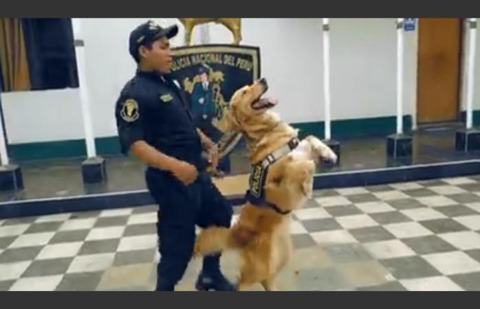 Policía Nacional del Perú baila Scooby Doo Papa