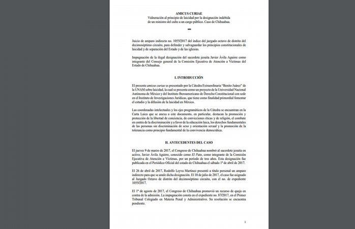 Lee completo el ensayo de la Unam sobre el caso de El Pato Avila