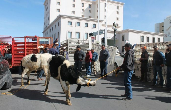 Apoyarán productores lecheros a Corral el domingo