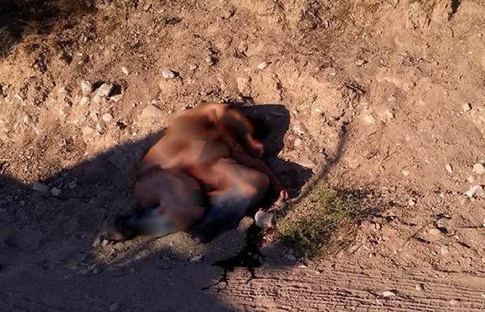 Identifican cuerpo de mujer hallada en rúa Camargo-Maravillas