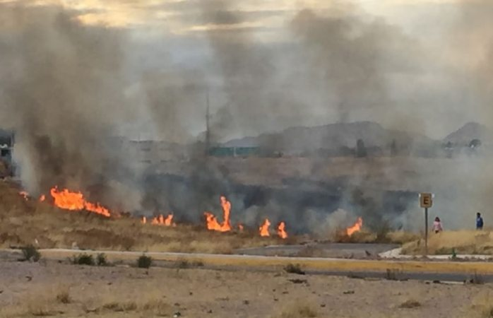 Se incendian campos detrás de Zootecnia
