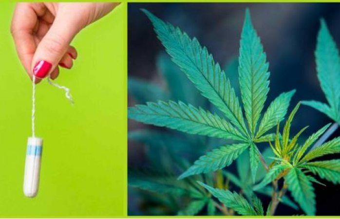 Prueban tampones con mariguana para aliviar dolores menstruales