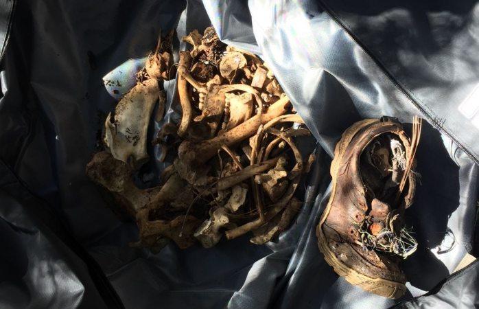 Hallan restos óseos en rancho de Maguarichi