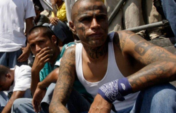 En la mira de Trump narcos mexicanos, colombianos y los maras