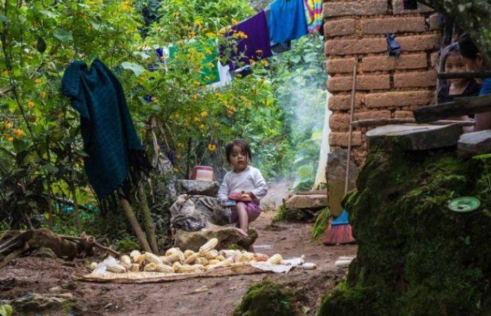 Con desperdicios se pueden alimentar a 7 millones de personas en México