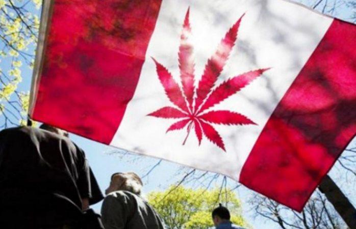 Canadá importará mariguana de Colombia por legalización