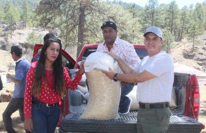 Entregan apoyos alimentarios en comunidades de Guadalupe y Calvo