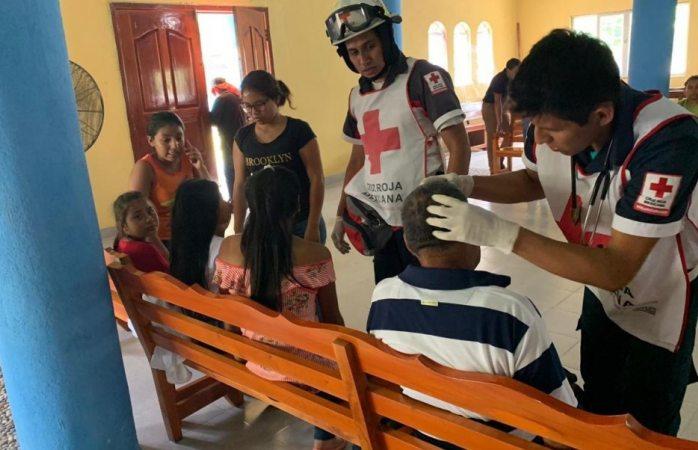 Abejas africanas atacan a fieles durante Viacrucis
