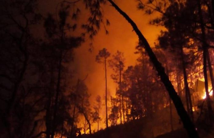 Fuerte incendio en la sierra tarahumara pone en peligro comunidades