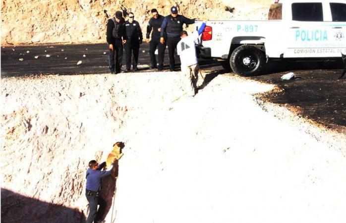 Rescatan a cachorro que cayó al fondo de una fosa