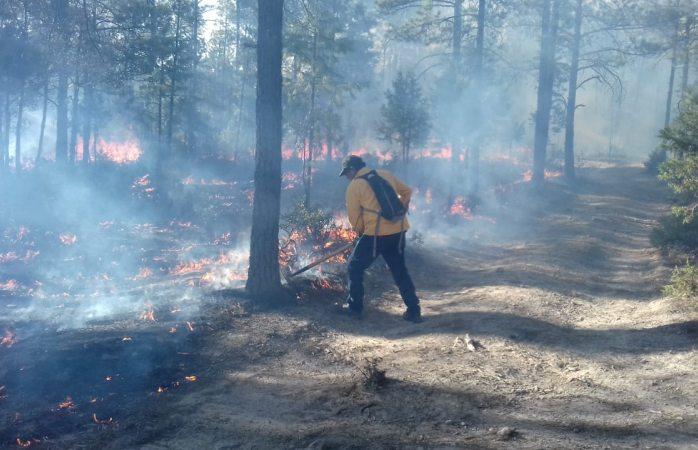 Van 54 incendios forestales en lo que va del año