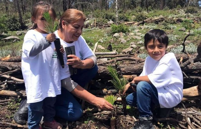 Plantarán 15 mil árboles en guadalupe y calvo