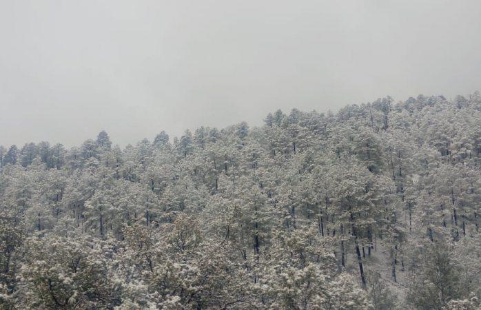 Copiosa nevada en Bocoyna y Madera