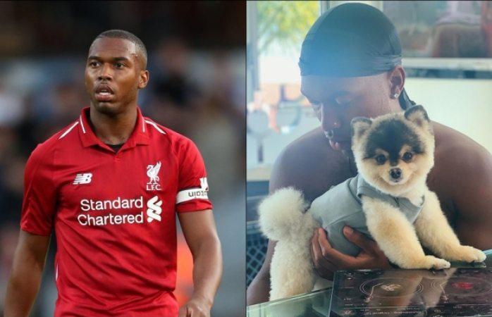 Futbolista ofrece 33 mil euros a quien encuentre a su perrito