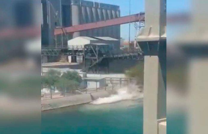 Derrama Grupo México 3 mil litros de ácido sulfúrico en el mar