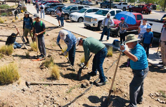 Plantan mil 500 árboles y plantas en el rejón