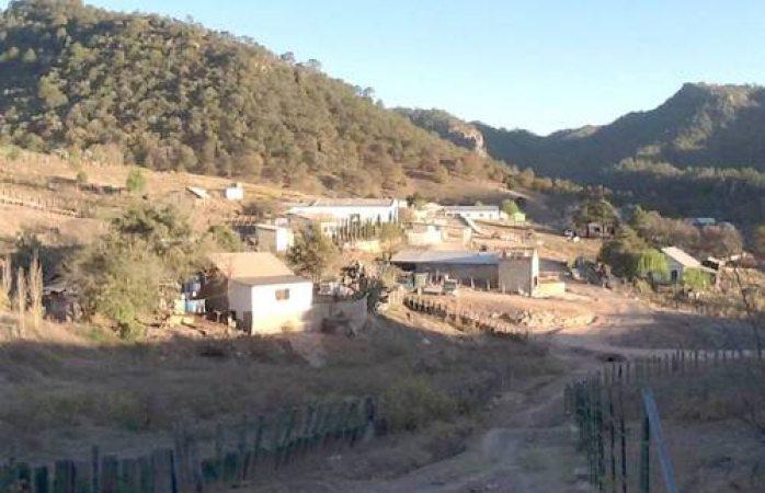 Mueren padre e hijo luego de ser atacados en Urique