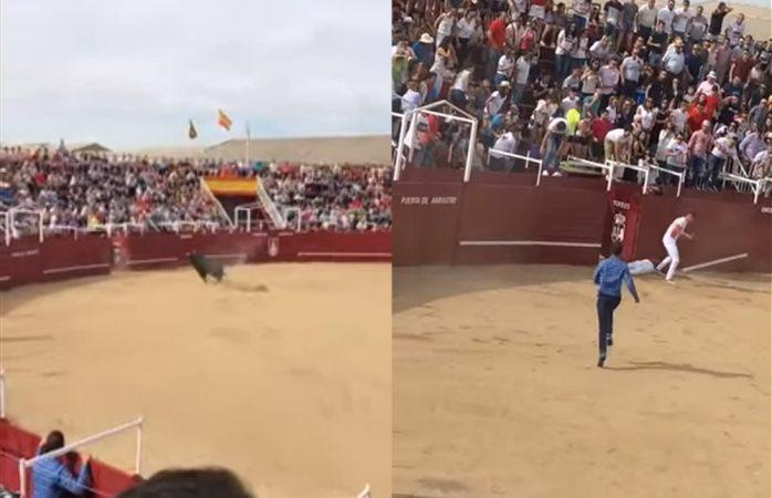Toro embiste y mata brutalmente a torilero en Madrid