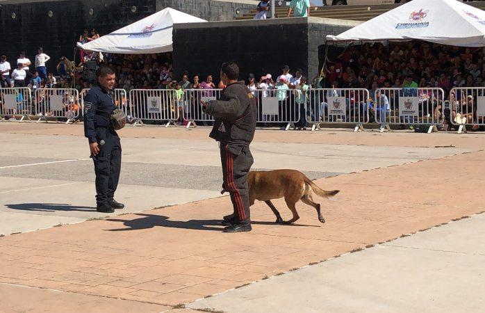 Exhiben ante 600 niños trabajos policiacos