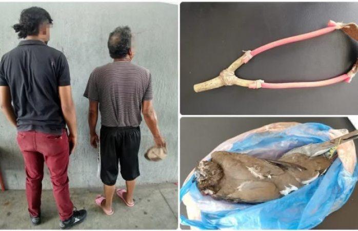 Arrestan a padre e hijo por matar palomas con resorteras