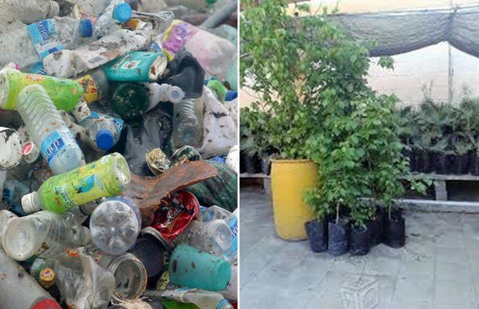Cambiarán botellas de plástico por árboles en plaza del ángel
