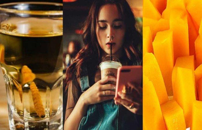 Despídete del mezcal, el café y el mango ¡hay crisis de polinización!