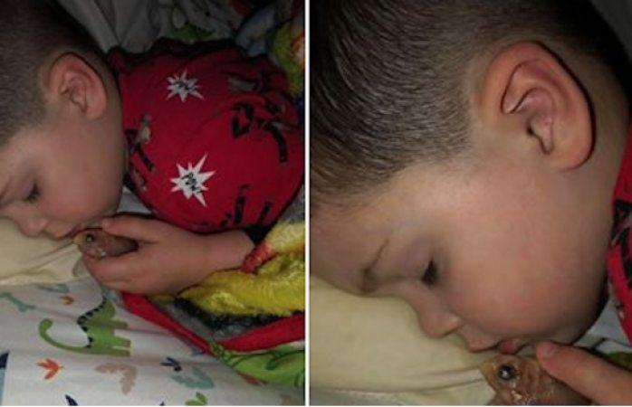 Niño mato a un pez por que quería dormir con el