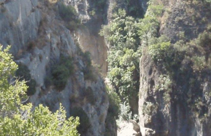 Muere al despeñarse en barranco de Bahuichivo
