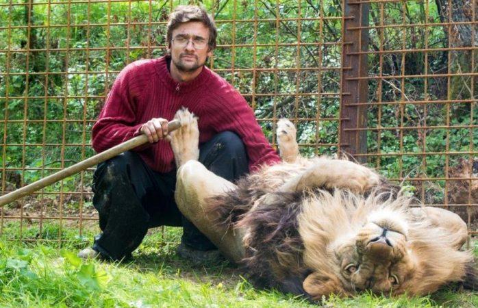 Muere hombre devorado por león que guardaba en su casa como mascota