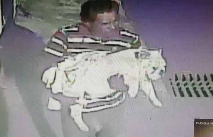 Ladrones roban casa y se llevan hasta el perro en Puebla