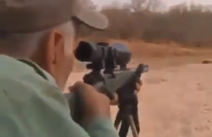 Video: cazador asesina cruelmente a león dormido