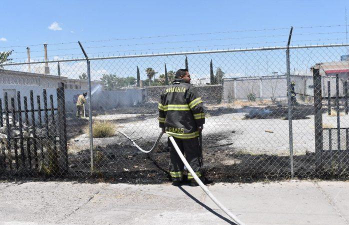 Incendia pasto seco y basura en San Felipe