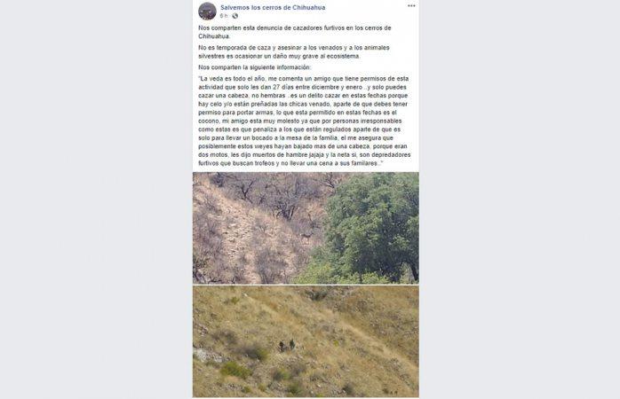 Denuncian cazadores de venado en cerros locales