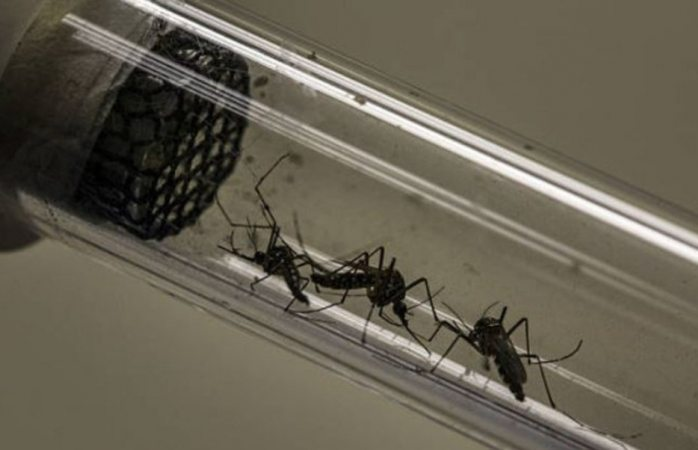 Detectan primer caso de dengue por transmisión sexual