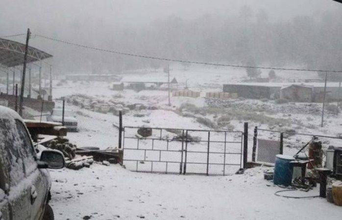 Alertan por nieve y gota fría el lunes en la entidad - La Opcion