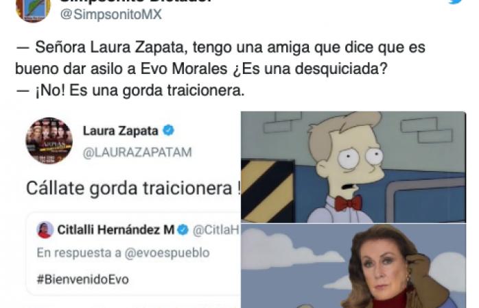 Laura Zapata llama a senadora, gorda traicionera