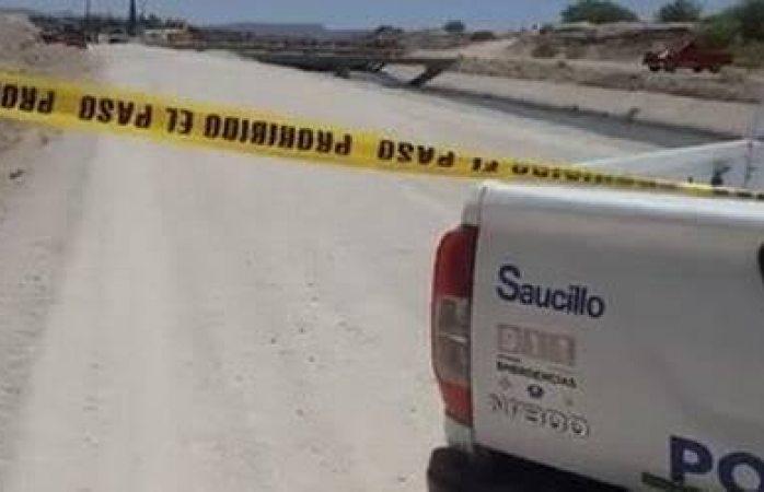 Hallan osamenta en Saucillo; Antropología lo investigan