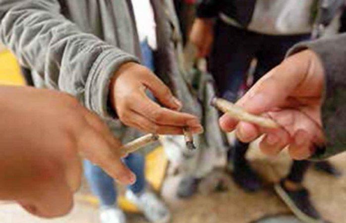 Buscan instituto que regule la cannabis; ayudará a abatir el hambre, dicen