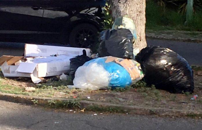 Amanece exceso de basura tirada frente al hospital morelos